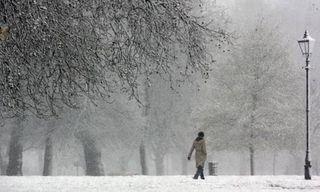 Snowscene460x276